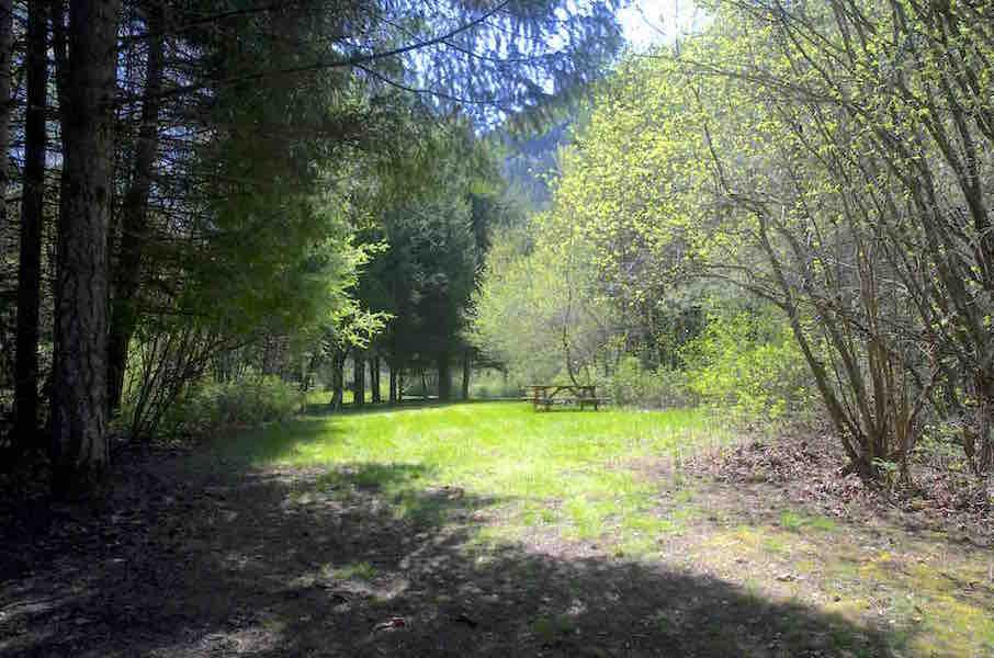 Lower Riverside – Bear Claw Alley – Site 32