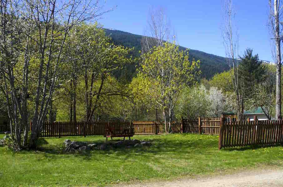 Central Tents – Coyote's Den – Site 22