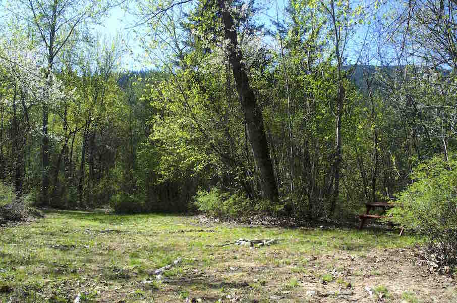 Creekside – Salmon Roe – Site 34