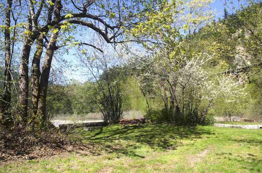 Creekside – Salmon Roe – Site 37
